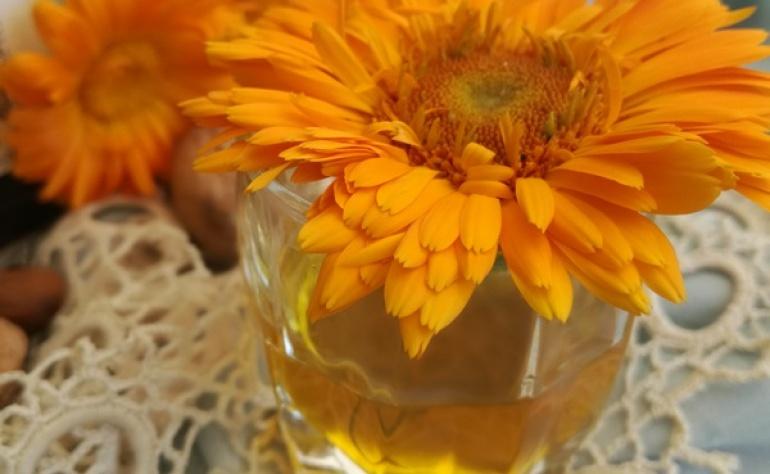 Полезните свойства на отделните съставки на жълтия кантарион